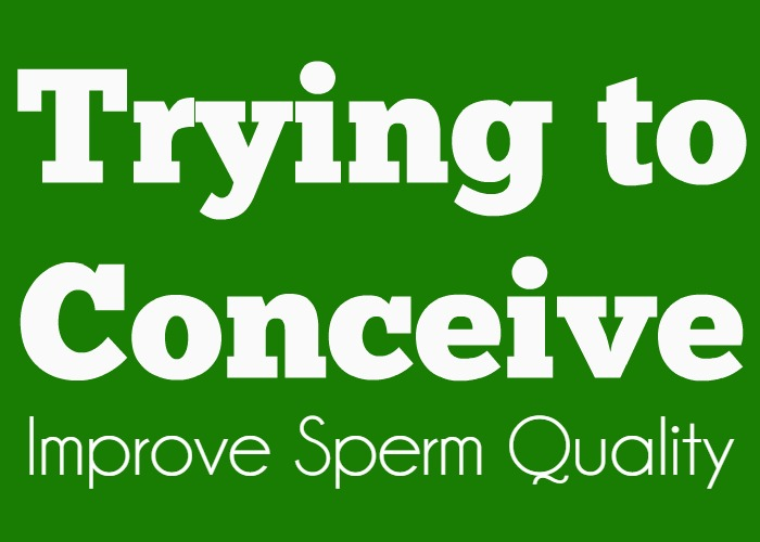 Trying to Conceive: Improve Sperm Quality